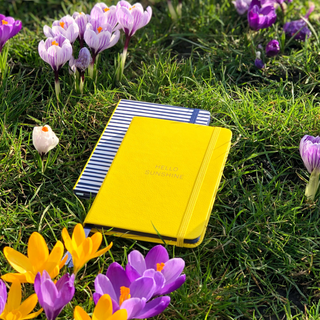 Two notebooks on top of each other sitting on grass surrounded by purple flowers.